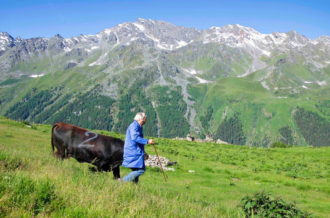 Alpage Val d'Hérens