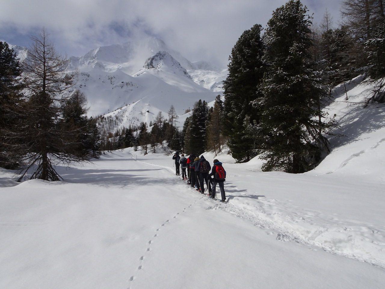 Raquettes dans le Val d'Hérens